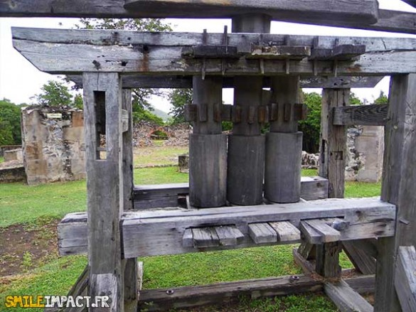 Les esclaves introduisaient la canne à sucre au centre du moulin