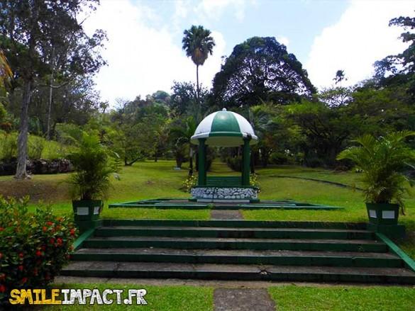 Jardin botanique - Découverte des arbres très rares comme le Cannon Ball et le Sealing Wax Palm.