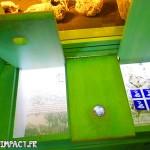 Trapes découverte pedagogique - musée domaine d'émeraude