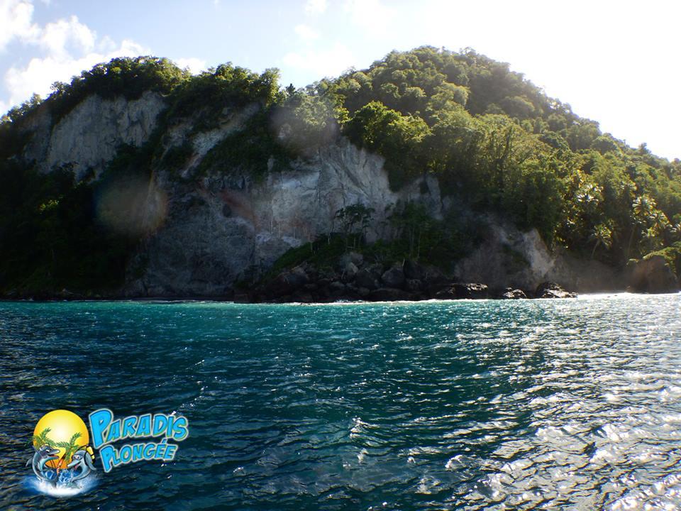 Plongée au Nord de la Martinique - Precheur - Le Sous marin